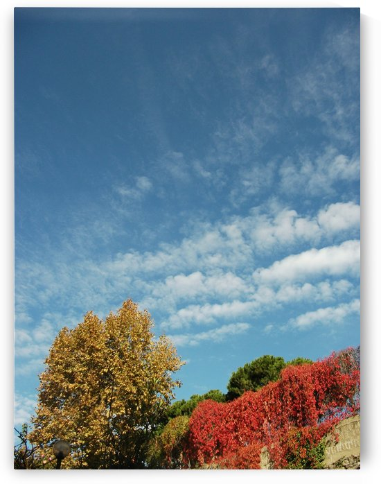 Italian Autumn - Color in the italian landscape - The Roman and italian landscape, Rome, Italy, photography by Alessandro Nesci