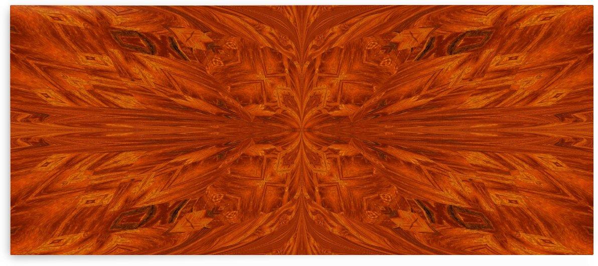 Golden Desert Butterfly 4 by Sherrie Larch