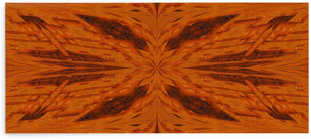 Golden Desert Butterfly 2 by Sherrie Larch