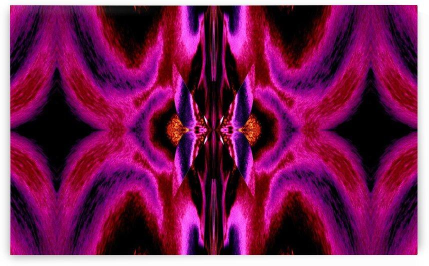 Hidden Butterfly 1 by Sherrie Larch