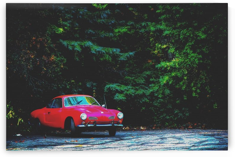 red classic car in the forest with green tree background by TimmyLA