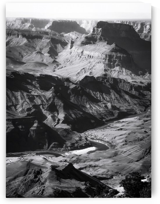 Desert at Grand Canyon national park, USA in black and white by TimmyLA