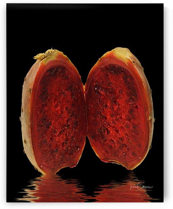 Dragon Fruit by Ivan Cohene