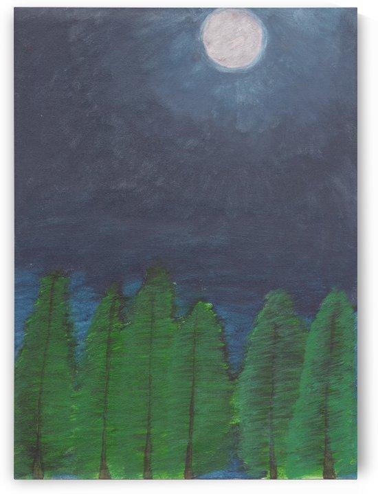 Midnight Light by Darryl Sanders