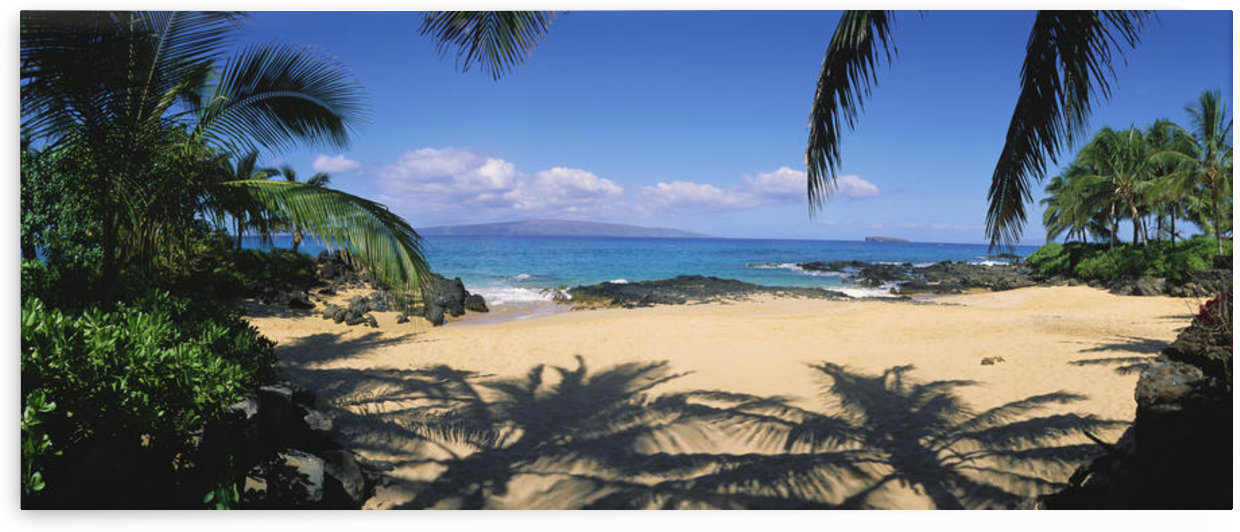 Hawaii, Maui, Makena; Small Secluded Beach Palm Shadows On Sand, Rocky Shore by PacificStock