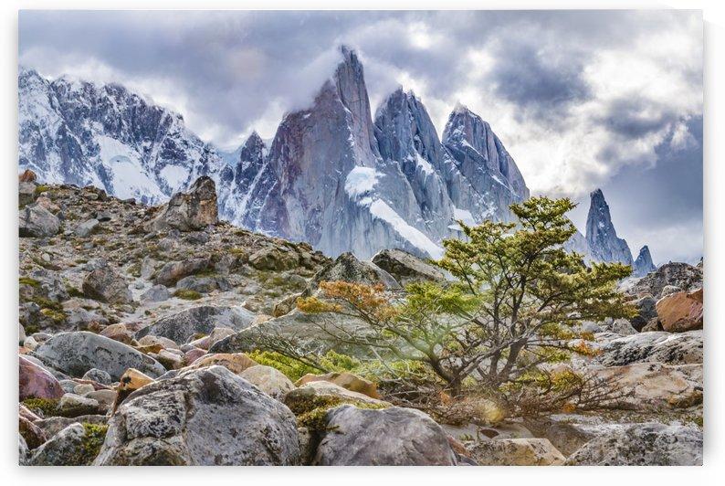 Laguna Torre El Chalten Argentina by Daniel Ferreia Leites Ciccarino