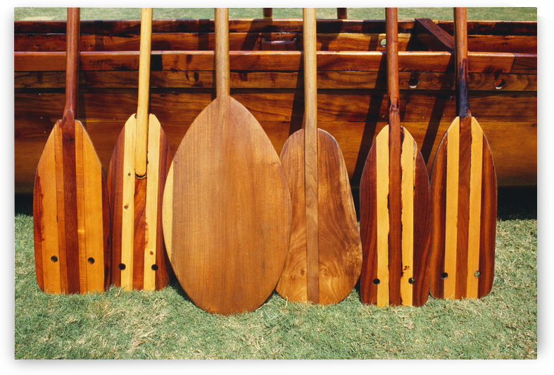 Hawaii, Different Shaped Canoe Paddles In Front Of Koa Canoe by PacificStock