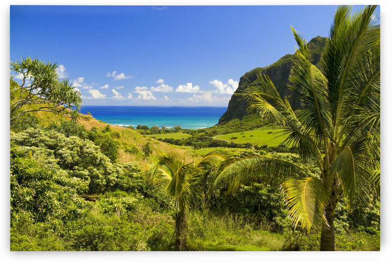 Hawaii, Oahu, Kualoa Ranch, Mountains And Ocean In Distance by PacificStock