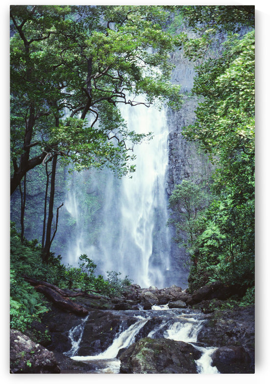Hawaii, Waterfalls Cascading Down Rocky Cliff, Trees Overlook Stream In Foreground. by PacificStock