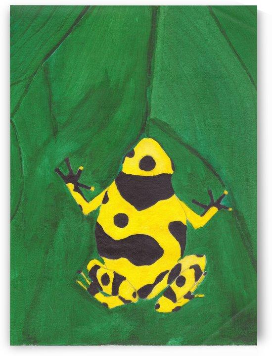 Dart Frog by Darryl Sanders