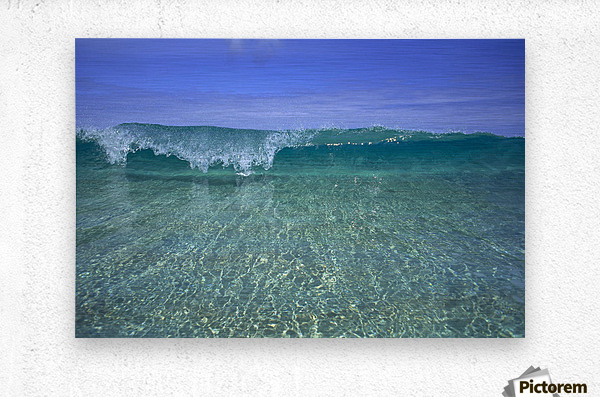 Hawaii, Front View Of Shallow Crystal Clear Aquamarine Wave, Curling A30D  Metal print