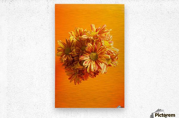 Orange scent  Metal print
