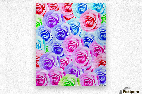 closeup colorful rose texture background in pink purple blue green  Metal print