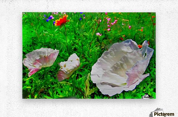 whiteflower  Metal print