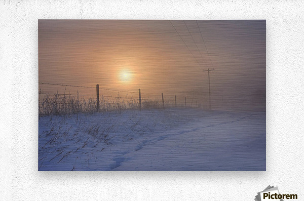 Foggy Winter Sunrise Over Barbed Wire Fence And Hydro Lines, Alberta Prairie  Metal print