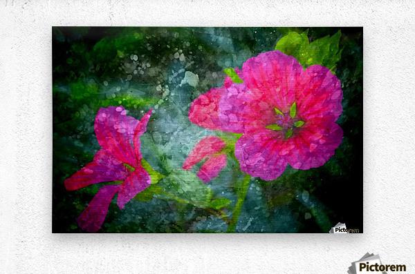 Fleurs d'artifices  Metal print
