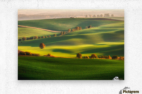 Green fields  Metal print