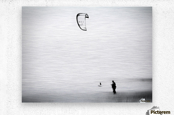 Sea, air, land.  Metal print