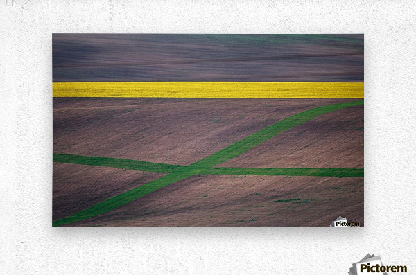 Painting the fields  Metal print