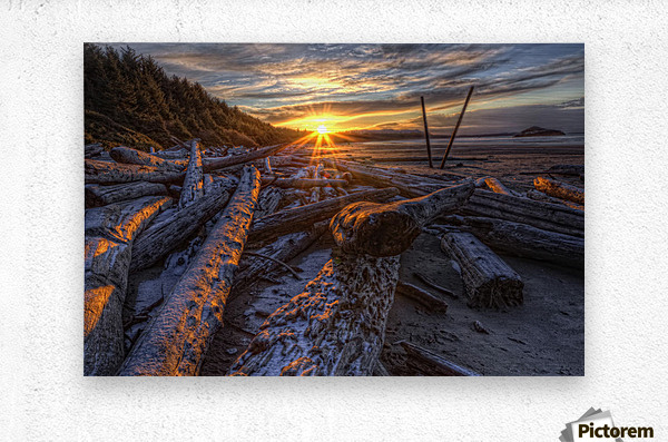 Sunrise Over The Logs At Long Beach, Pacific Rim National Park, British Columbia.  Metal print