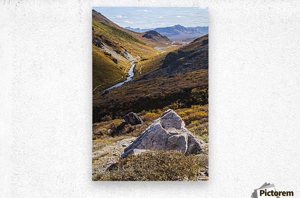 Savage River and the landscape in the rocky high country, Denali National Park and Preserve, interior Alaska; Alaska, United States of America  Metal print