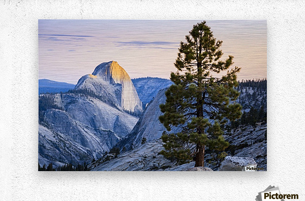 Half Dome seen from Olmsted Point, Yosemite National Park; California, United States of America  Metal print