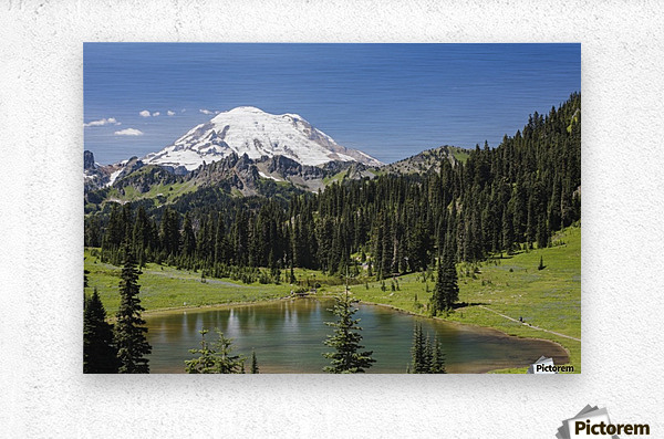 A view of Mount Rainier above Tipsoo Lake, near the top of Chinook Pass on Highway 410 in the Cascade Mountains; Washington, United States of America  Metal print