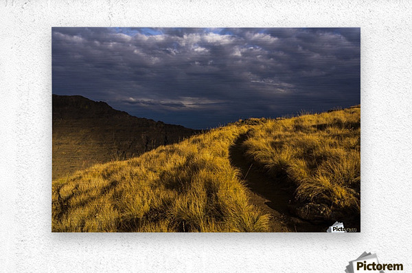 Evening sun highlights Kiger Gorge at Steens Mountain; Frenchglen, Oregon, United States of America  Metal print