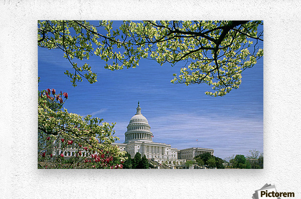 R.Watts; Capitol Building Washington, Dc  Metal print