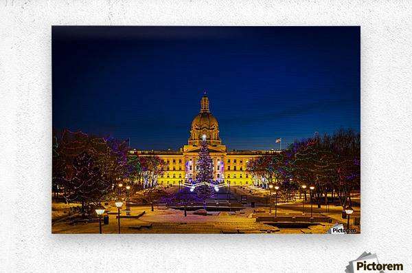 Alberta Legislature building illuminated and a Christmas tree with colourful lights on the trees for decoration at Christmas time; Edmonton, Alberta, Canada  Metal print