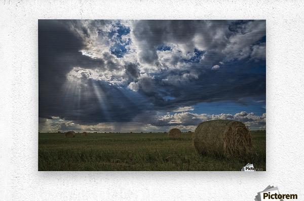 Sunlight breaks through the storm clouds over a field of hay bales; Saskatchewan, Canada  Metal print
