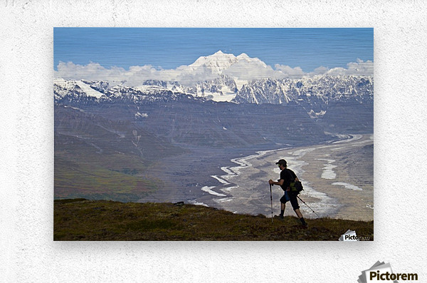Silhouette Of A Man Hiking In The Tokosha Mountains Above The Tokositna Glacier With Mt. Hunter And The Alaska Range In The Background, Denali National Park & Preserve, Interior Alaska, Summer  Metal print
