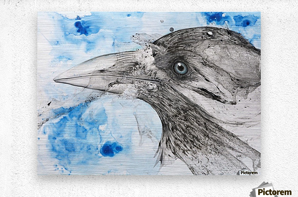 Illustration of a bird's eye and beak with mottled blue and white background  Impression metal