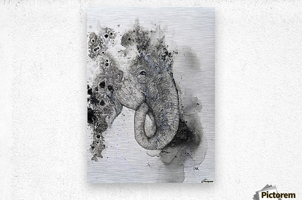 Illustration of an elephant's head  Metal print