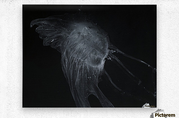 Glowing grey jellyfish in the dark water  Metal print