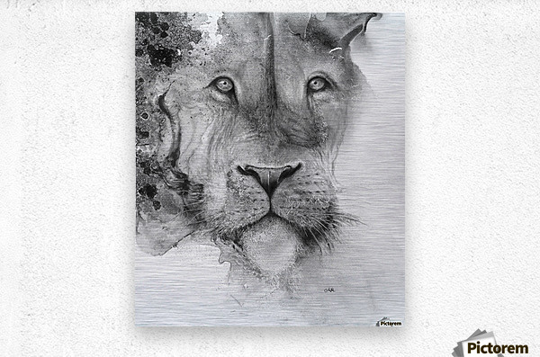 Illustration of a lion's face and a mottled background  Impression metal