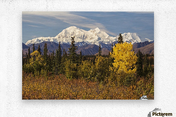 Denali, viewed from south of Cantwell, from the Parks Highway in Interior Alaska; Alaska, United States of America  Metal print