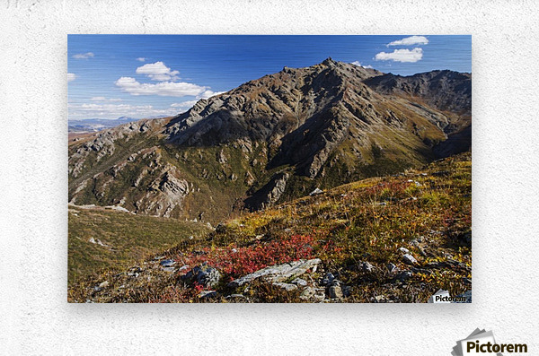 Landscape in the rocky high country of Denali National Park and Preserve, interior Alaska; Alaska, United States of America  Metal print