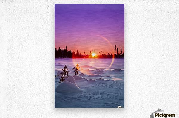 Sun flare glowing over a winter landscape; Trapper Creek, Alaska, United States of America  Metal print