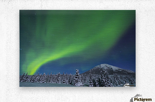 The aurora glows in the sky above Donnelly Dome and a snowy, moonlit landscape, south of Delta Junction; Alaska, United States of America  Metal print