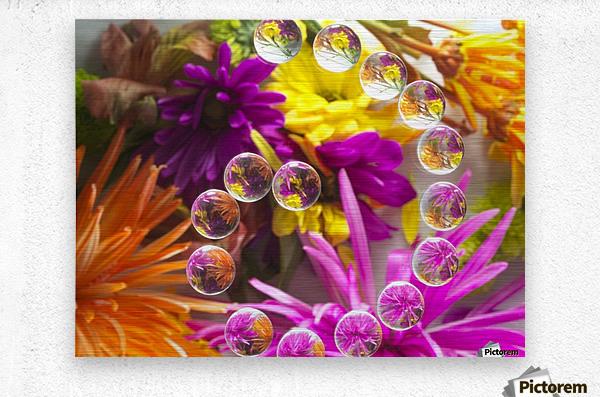 FLOWERS REFRACTION 13  Metal print