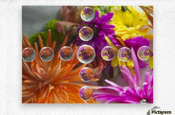 FLOWERS REFRACTION 16  Metal print