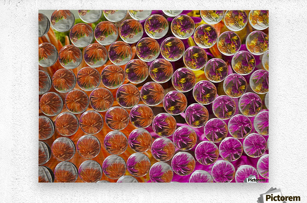 FLOWERS REFRACTION 4  Metal print