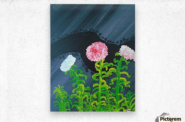 44_44__1 3__garden R  Metal print