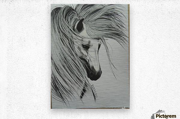 427494_396066667143490_766091326_n  Metal print