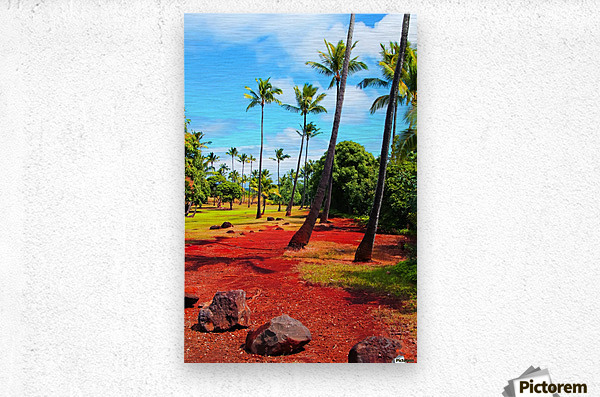 palm trees with green tree and blue cloudy sky in summer  Metal print