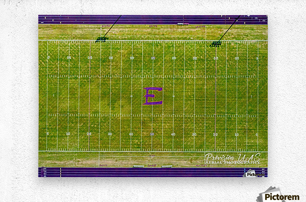 England, AR | Lions Football Field  Metal print