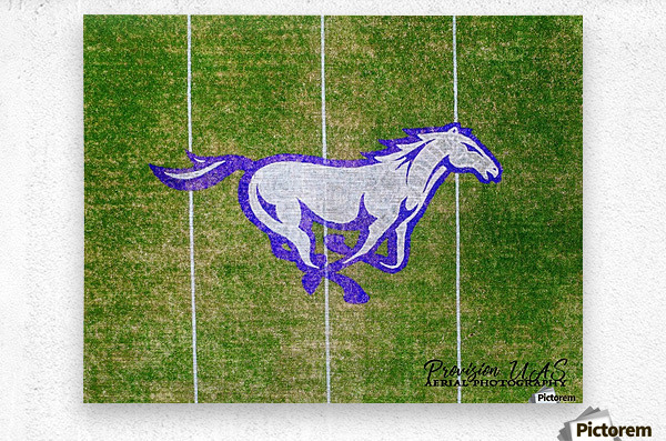 North Little Rock, AR | CAC Mustang  Metal print
