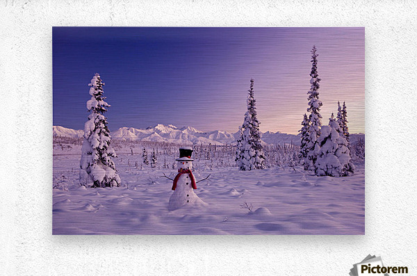 Snowman At Sunset, Snow Covered Spruce Trees, Winter, Chugach Mountains In The Background, Glenn Highway, Alaska Usa.  Metal print
