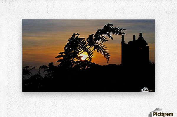 Fern castle sunset  Metal print